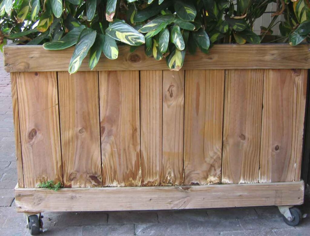 Problems with carpenter built wood planters