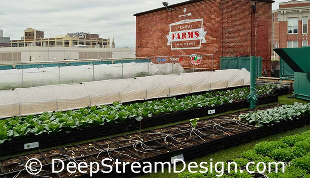 Link to DeepStreams Commercial garden planter liners with advanced drainage in stock and custom sizes.