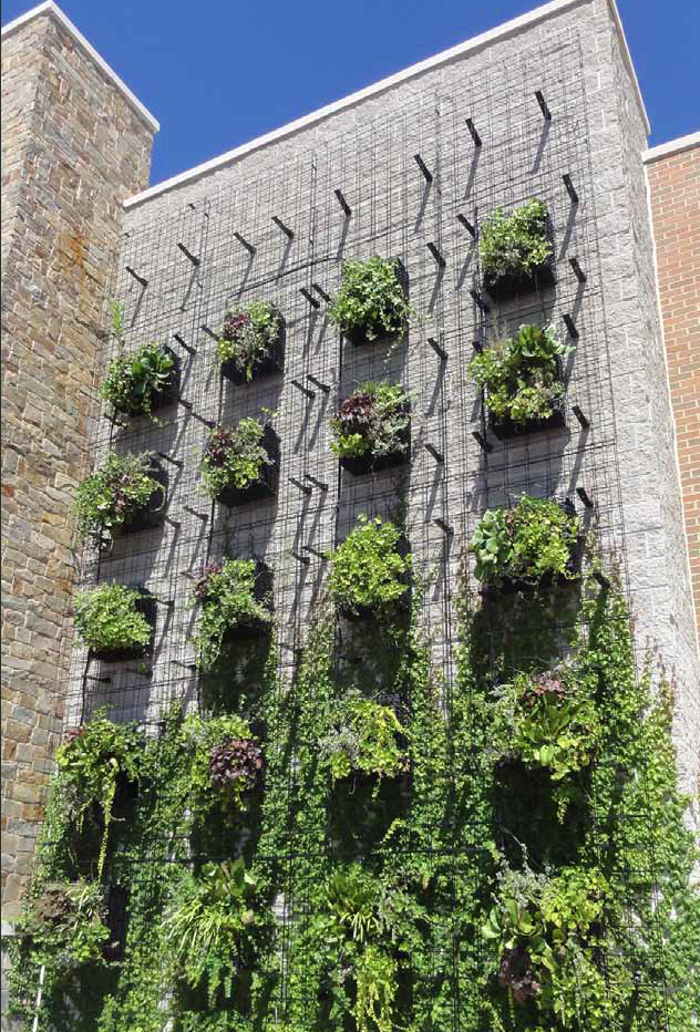 Green Wall Garden Planter cools the building while cleaning the air and giving off oxygen